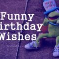 Funny Birthday Wishes, Messages and Quotes