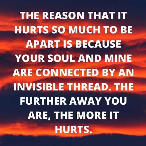 soulmate quotes for him