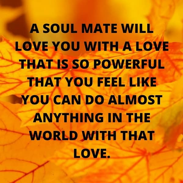 quotes from the soulmate