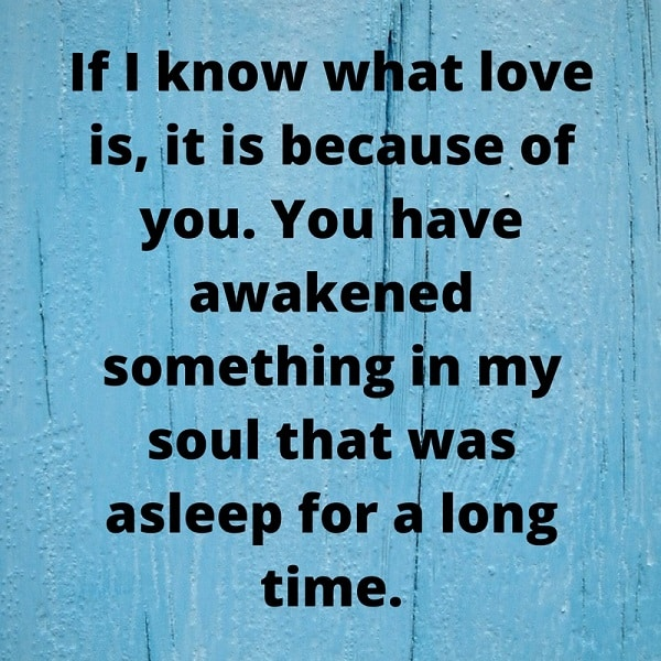 quote from soulmate