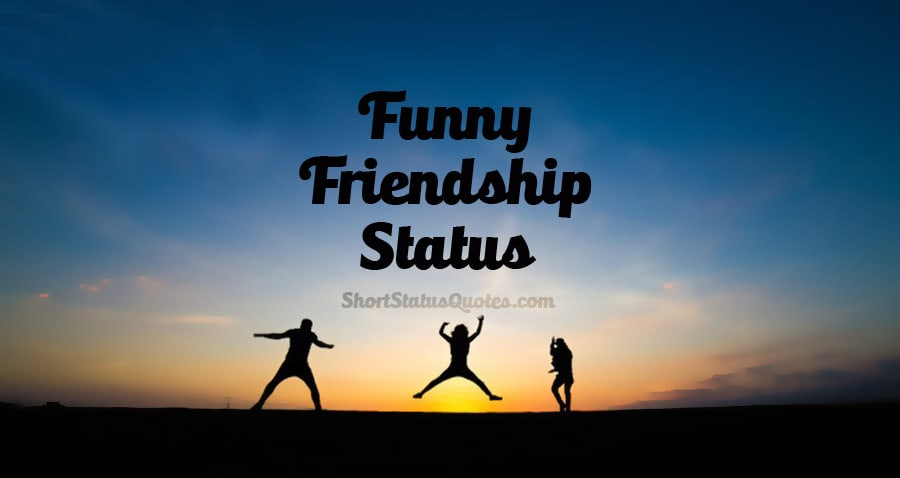 Funny Friendship Status, Captions & Funny Friendship Quotes