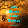 short love quotes