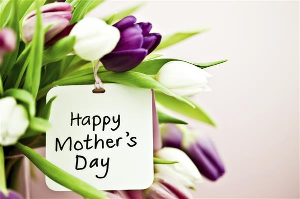 Mother's Day 4D Images