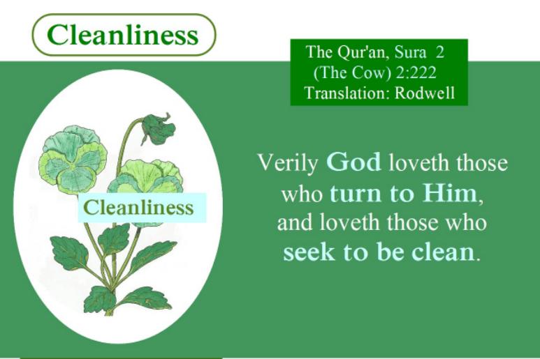 Islamic Hadith on Health and Hygiene (8)