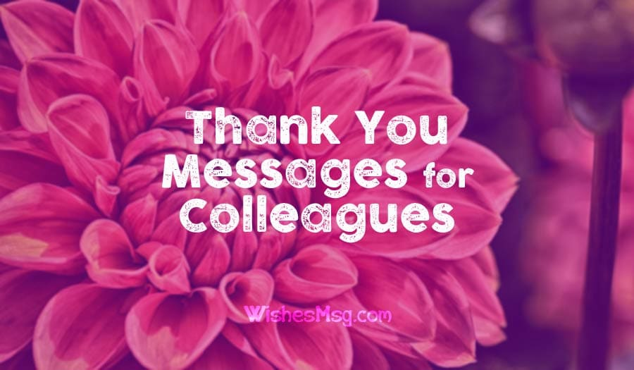 Thank You Messages for Colleagues & Appreciation Note