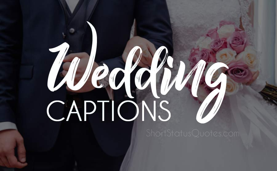 Wedding Captions : Best Wedding Photo Caption for Instagram & Facebook