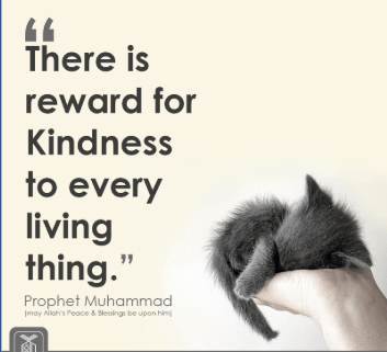Islamic Quotes on Kindness (10)