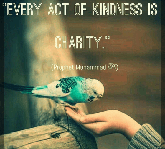 Islamic Quotes on Kindness (5)