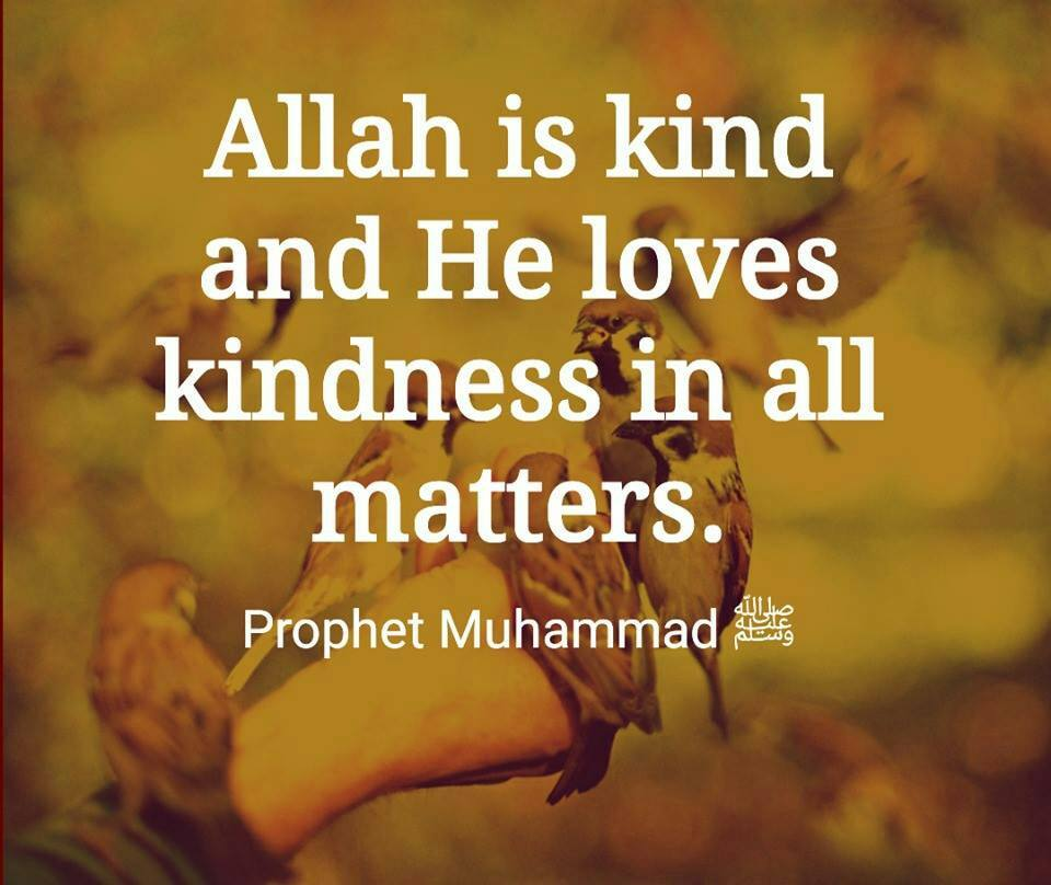 Islamic Quotes about Kindness (13)