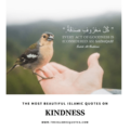 islamic quotes on kindness