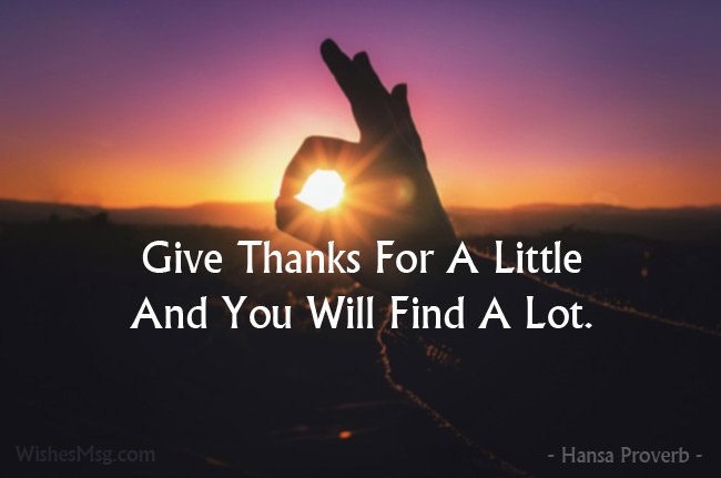 Quotes of appreciation to show your gratitude