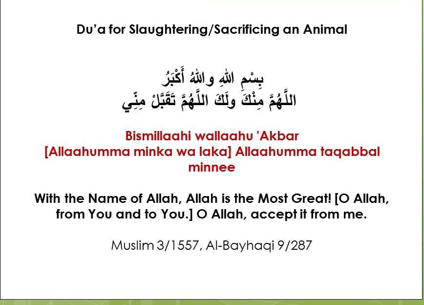 eid sunnah acts
