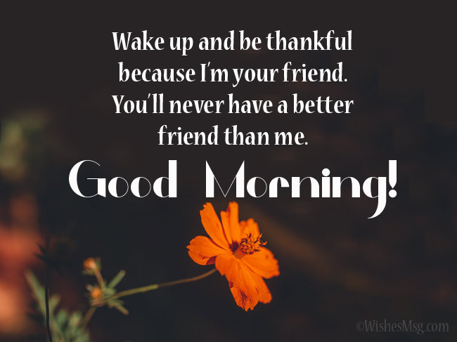 Funny good morning wishes for a friend